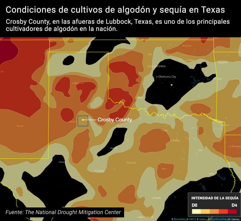 Condiciones de cultivos de algodón y sequía en Texas. Fuente: The National Drought Mitigation Center